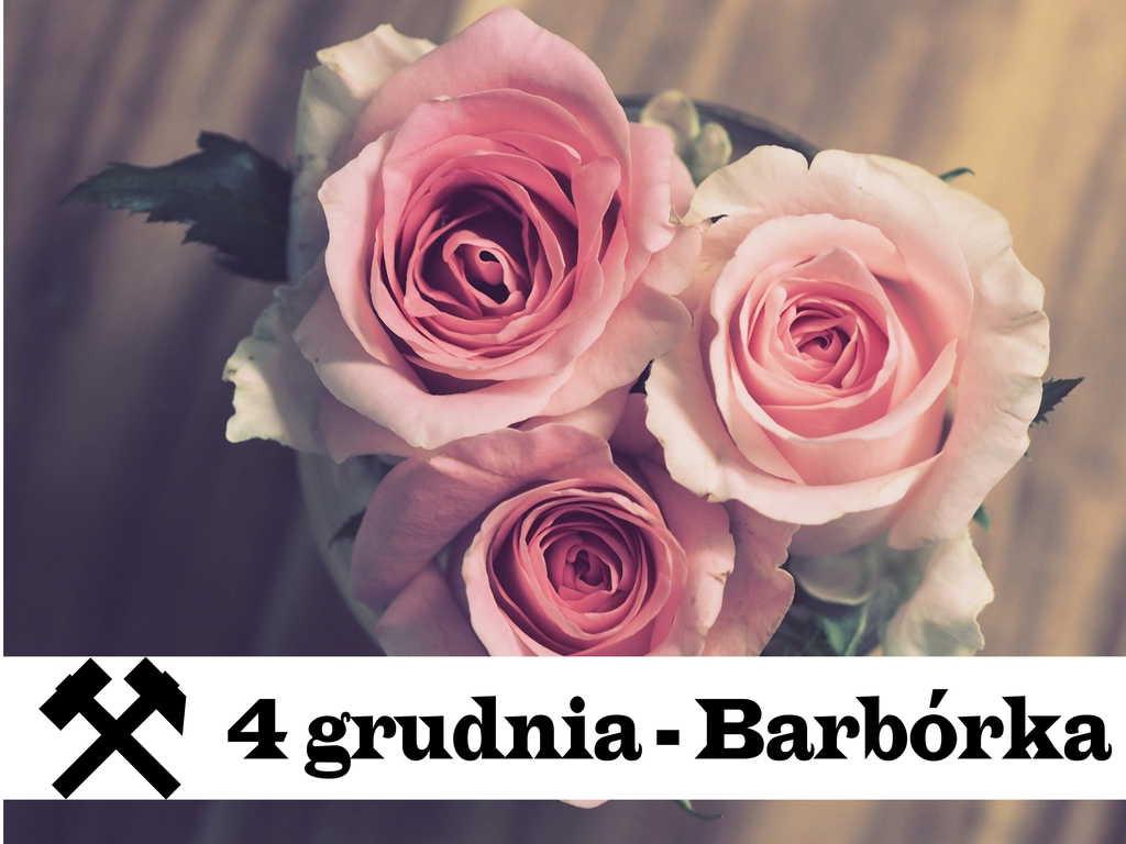 Na plakacie widać różowe róże oraz napis: 4 grudnia - Barbórka. Obok napisów jest umieszczony także symbol górników - czyli kupla, a inaczej mówiąc młotki górnicze