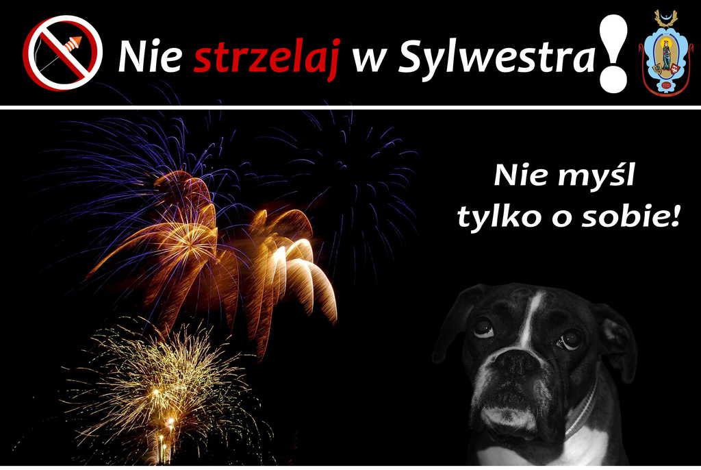 Sylwester-1.jpeg