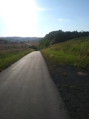 Na zdjęciu widać drogę prowadzącą ze Skotnik do Radłowa oraz okoliczne pola uprawne i łąki
