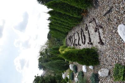 Na zdjęciu widać układ krzewów oraz napis z kamieni w miejscowości Budczyce