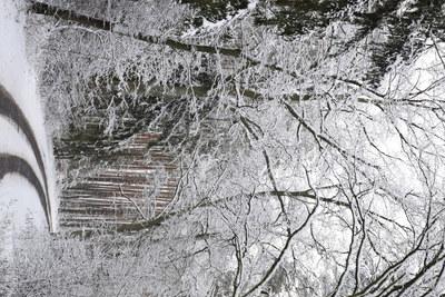 Na zdjęciu widać drogę wiodącą do Złotówka oraz drzewa pokryte śniegiem