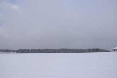Na zdjęciu widać z oddali las oraz łąkę pokrytą śniegiem