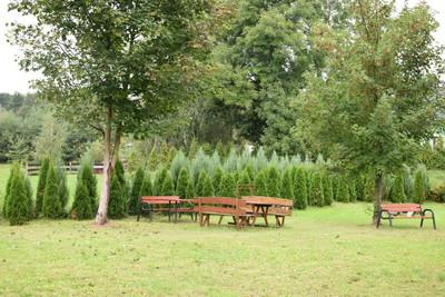 Na zdjęciu widać plac zabaw w miejscowości: Ludgierzowice