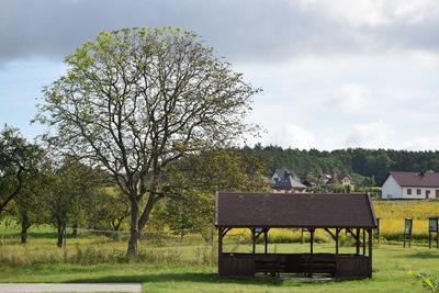 Na zdjęciu widać altankę w miejscowości: Niedary