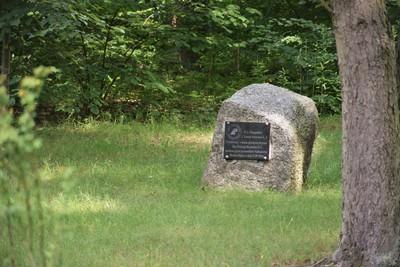 Na zdjęciu widać pomnik upamiętniający zasadzenie cisa pospolitego
