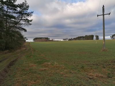 Na zdjęciu widać w tle las, łąki oraz polną drogę oraz słup energetyczny na terenie Gminy Zawonia