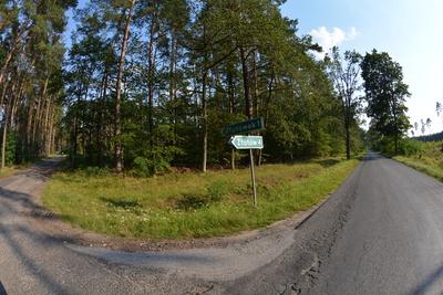 Zdjęcie przestawia drogi gminne na Złotówek  i Złotów oraz otaczające je lasy
