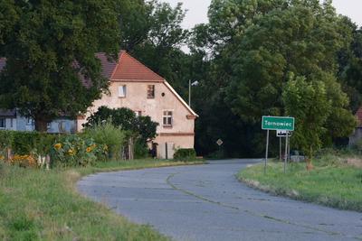 Zdjęcie przedstawia drogę prowadzącą od Cielętnik do Tarnowca i zabudowę mieszkalną