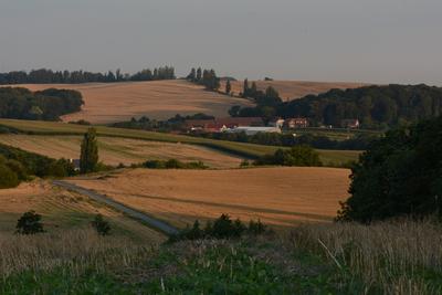 Zdjęcie przedstawia wzgórza skotnickie