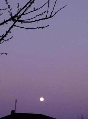 Zdjęcie zrobione o zmroku, widoczny księżyc