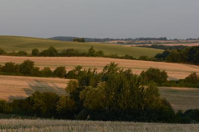 Zdjęcie przedstawia wzgórza skotnickie, z widokiem na Radłów
