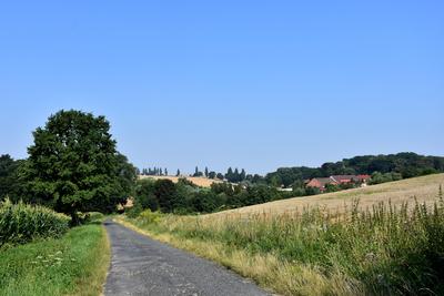 Na zdjęciu widać drogę prowadzącą do Radłowa oraz łąki, pola, drzewa i zabudowę mieszkalną